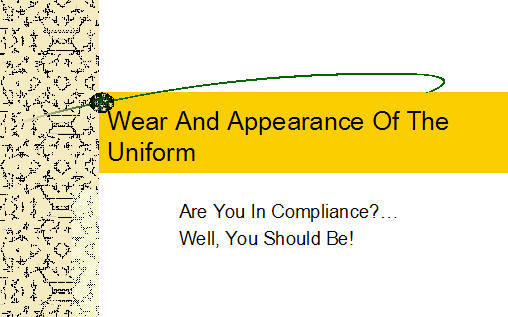 Wear and appearance of the uniform armystudyguide click here to download the presentation toneelgroepblik Choice Image